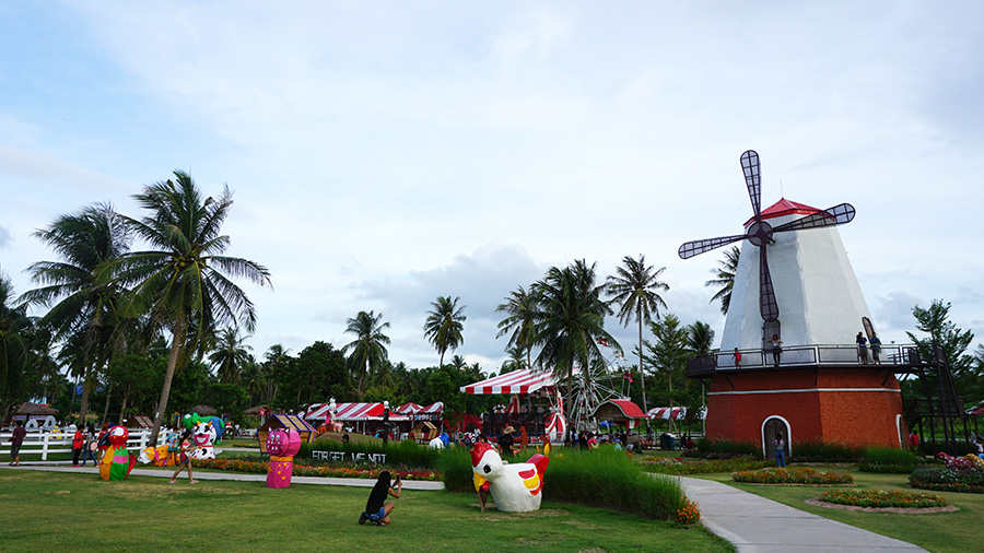 Pattaya Sheep Farm 11