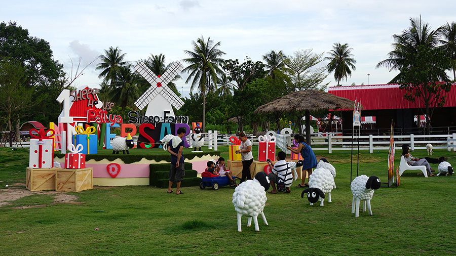 Pattaya Sheep Farm 22