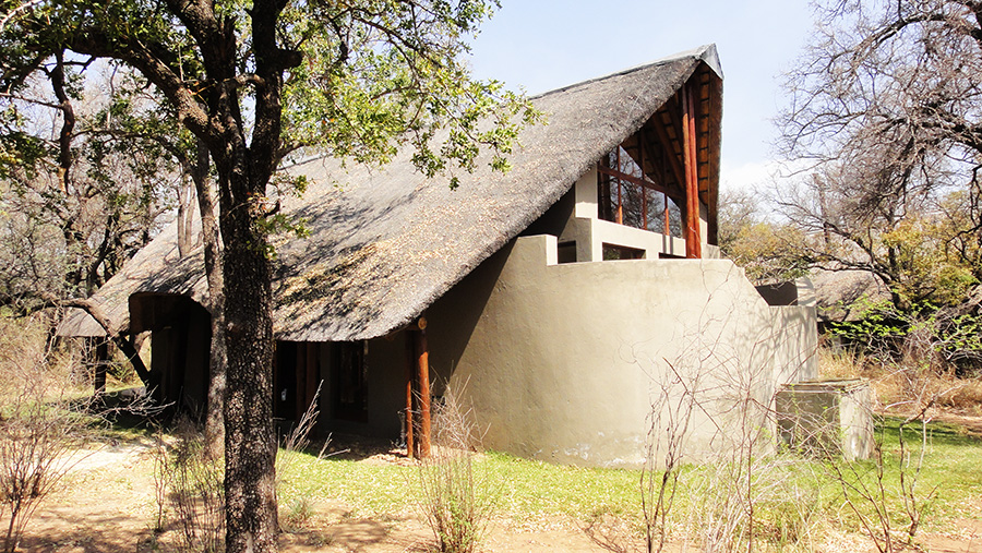 South African Safari and Lodging 15