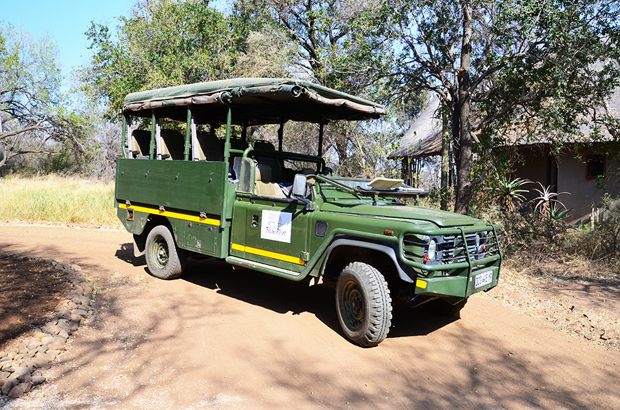 South African Safari and Lodging 18