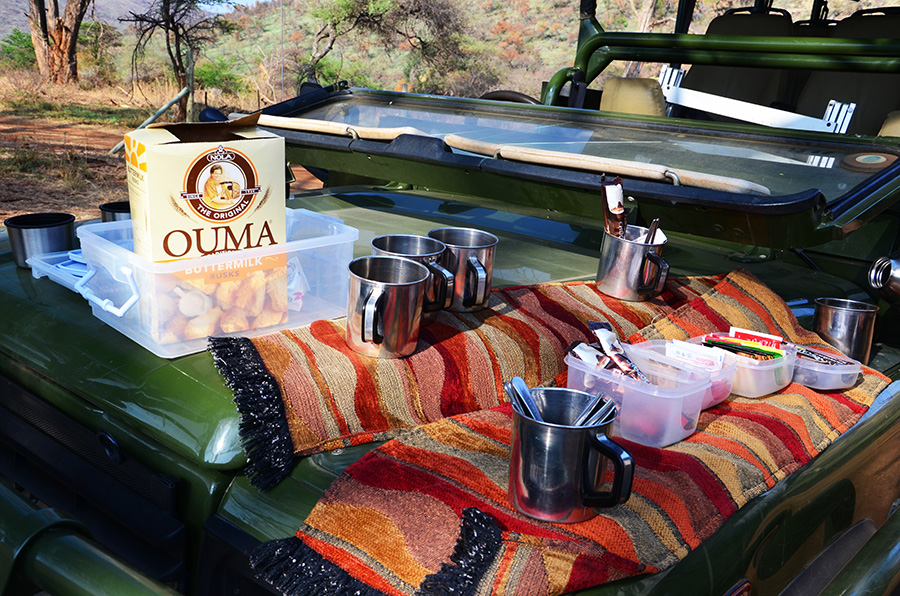 South African Safari and Lodging 28