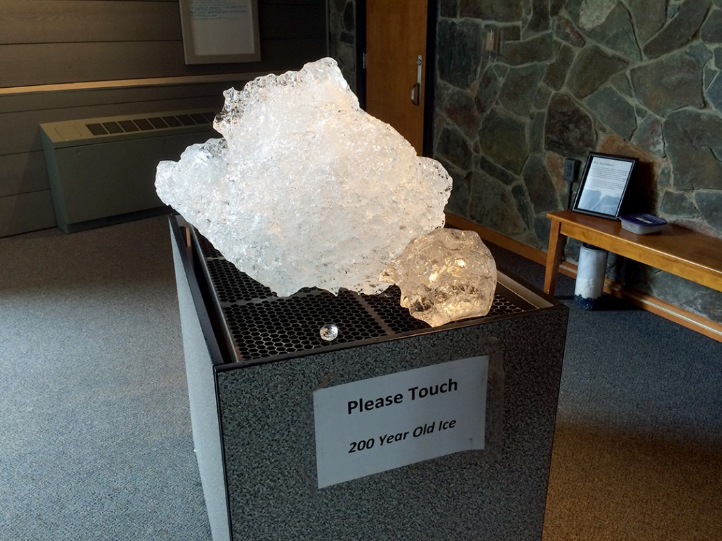 Mendenhall Glacier Visitor Center 15
