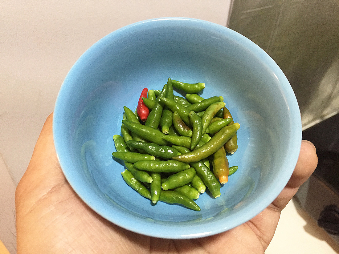 Chayote Spicy Salad 5