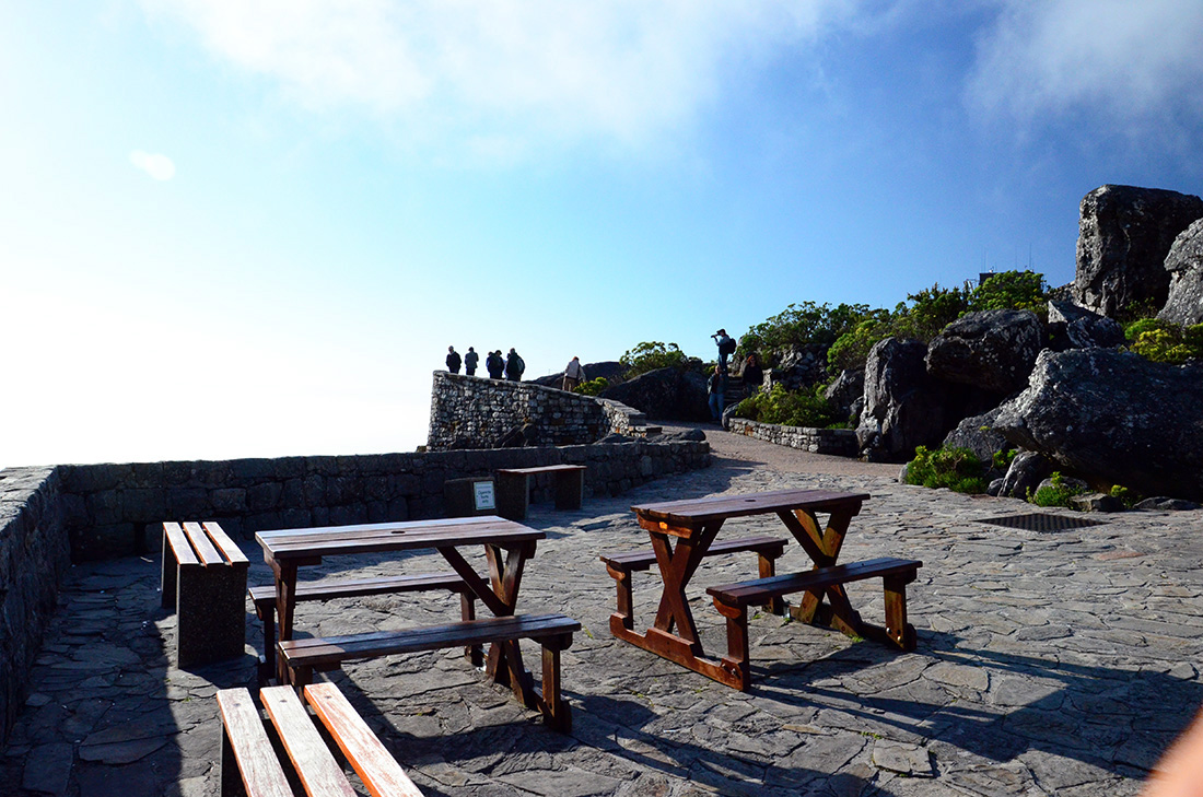 Table Mountain National Park 19