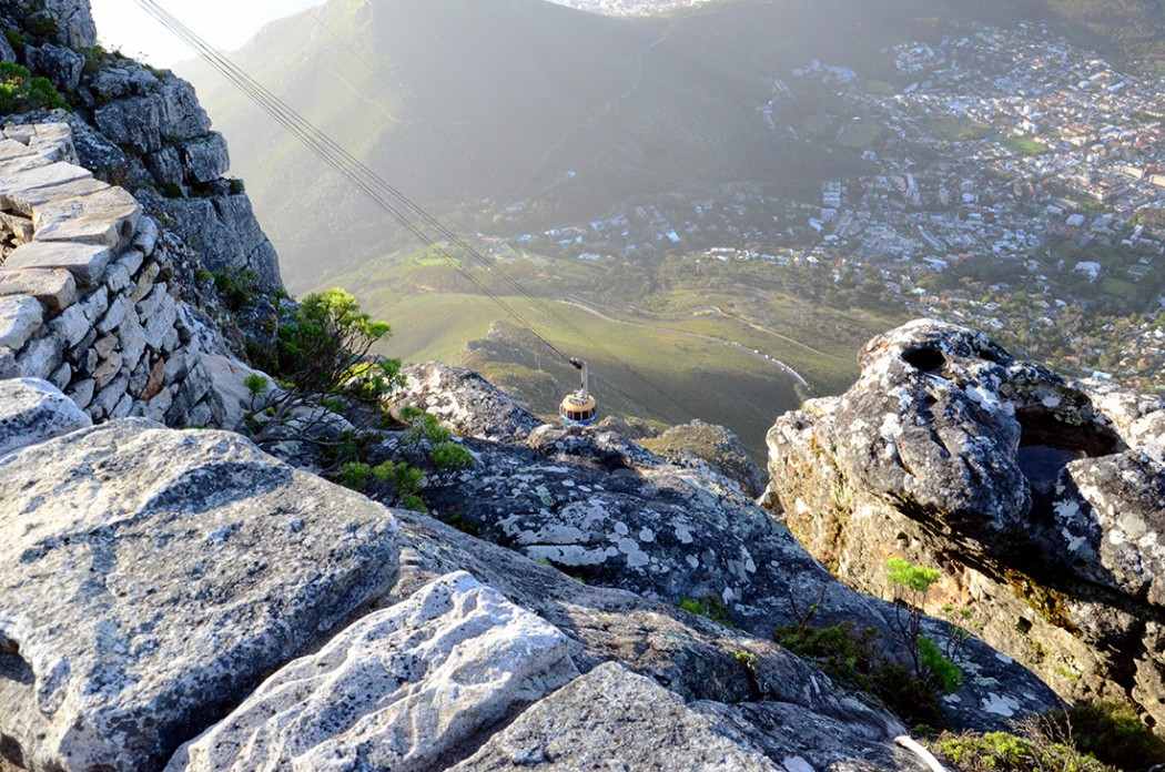Table Mountain National Park 23