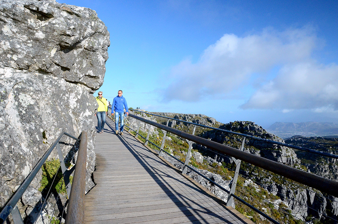 Table Mountain National Park 9