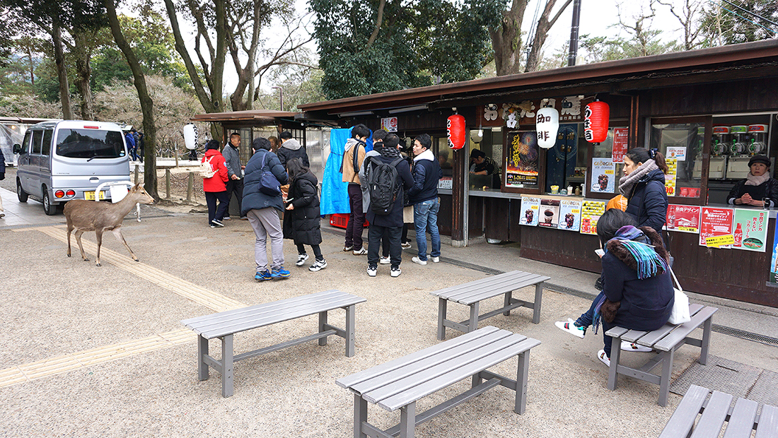 Todai-ji Temple Nara Osaka 2