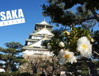 หนึ่งในแลนด์มาร์กเมืองโอซาก้า ถ้าไม่ไปปราสาทโอซาก้า (Osaka Castle) ไม่ได้แล้วมั้ง ^^