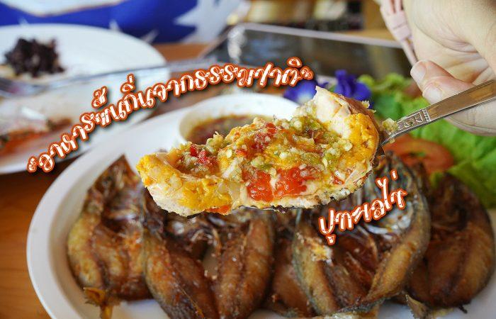กินอาหารพื้นถิ่นจากธรรมชาติ แกงอ่อมกรรเชียงหนาม อร่อย มีประโยชน์ ปูไข่เน้นๆ ที่ข้าวใหม่ ปลามัน อัมพวา ลองแล้ว ติดใจมากกก…
