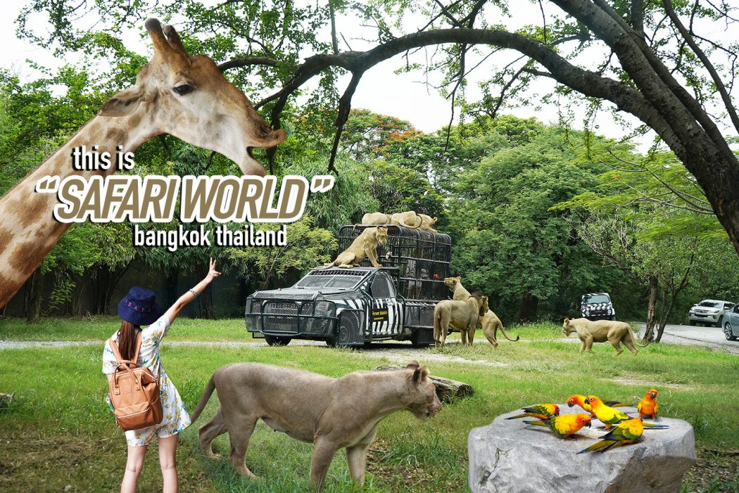 Safari World 00