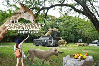 ส่องสัตว์ไม่ต้องไปไกลถึงแอฟริกาใต้ ซาฟารี เวิลด์ (Safari World) #ก็พอ มีครบจบในที่เดียว #วันเดียวไม่ครบ บอกเลย ^^